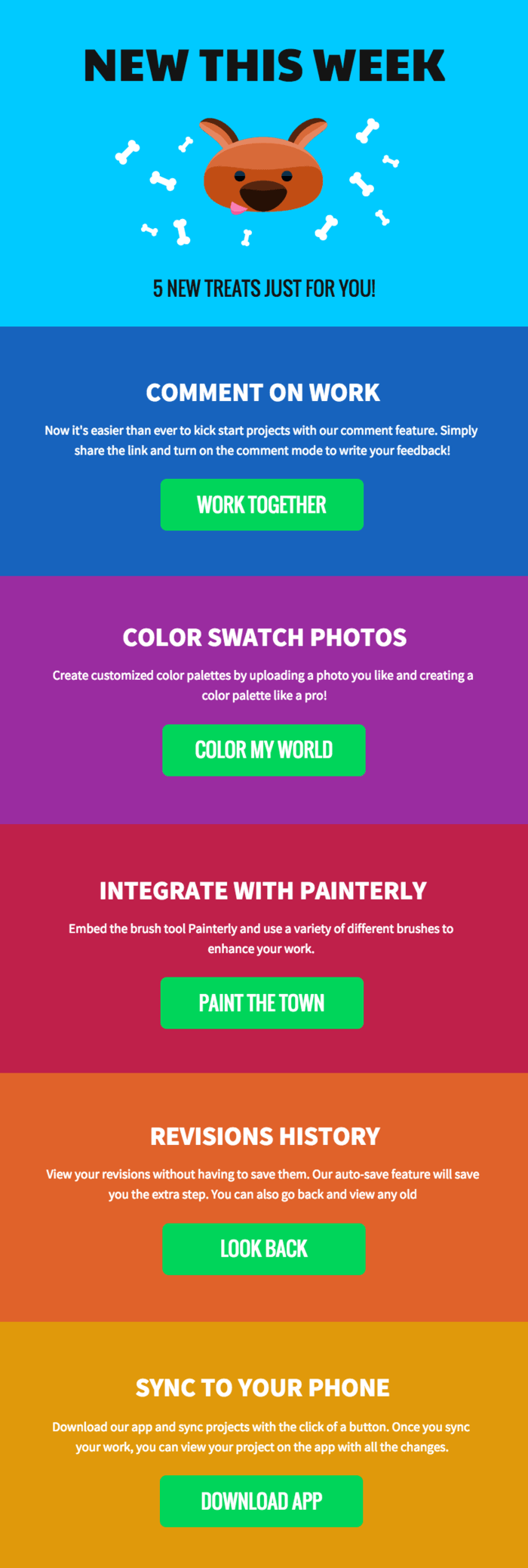 colorful event newsletter template venngage