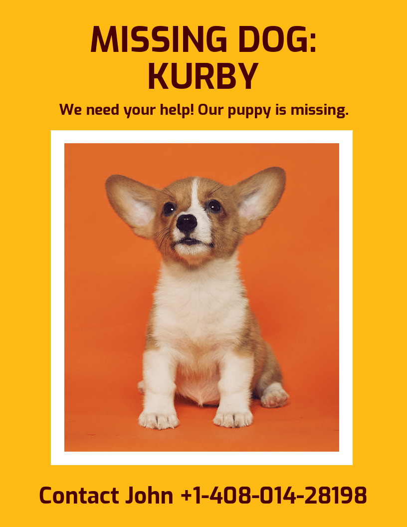 Bold Missing Dog Poster Template