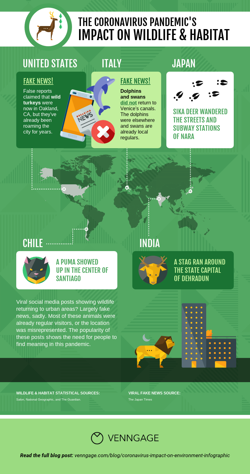 Pandemic's Impact on Wildlife Map Infographic Template