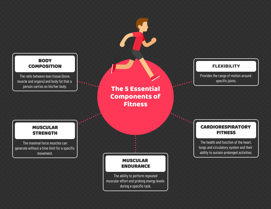Components of Fitness Mind Map Template