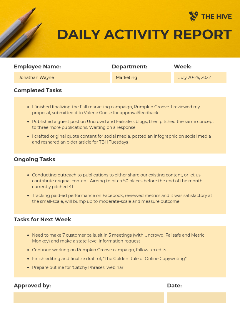 Employee Daily Activity Report Template