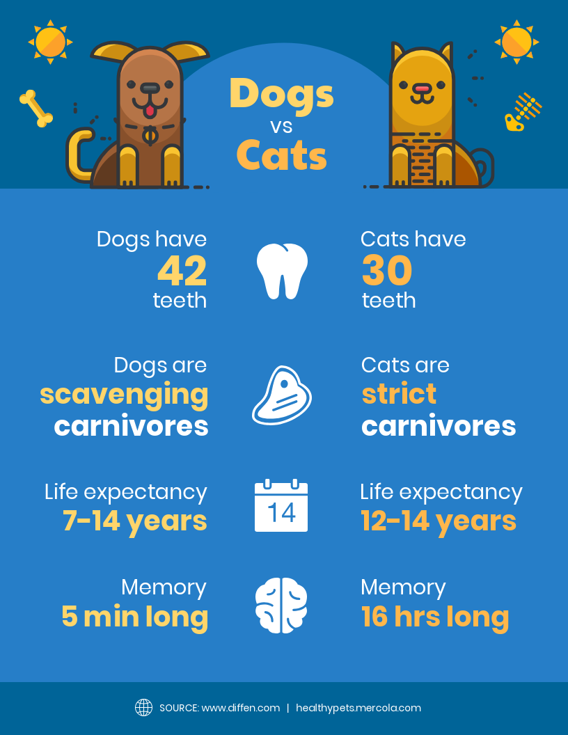 Dogs vs Cats Comparison Infographic Template