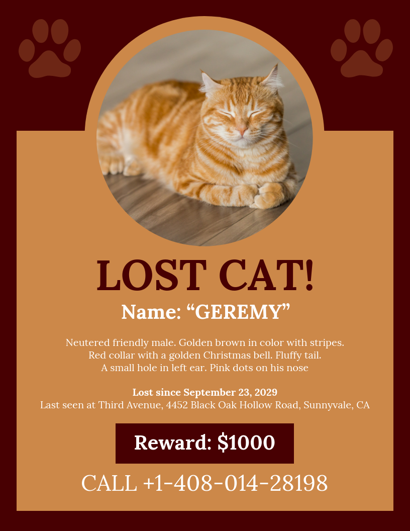 Brown Missing Cat Poster Template