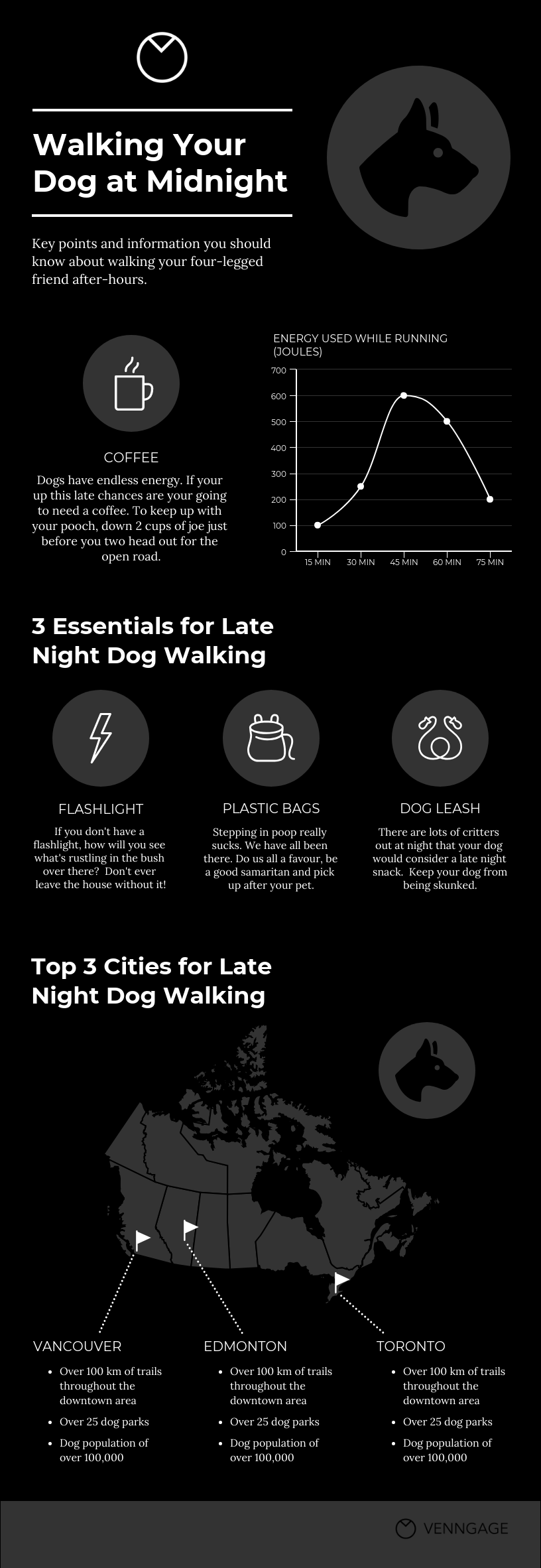 Dog Walking Infographic Template