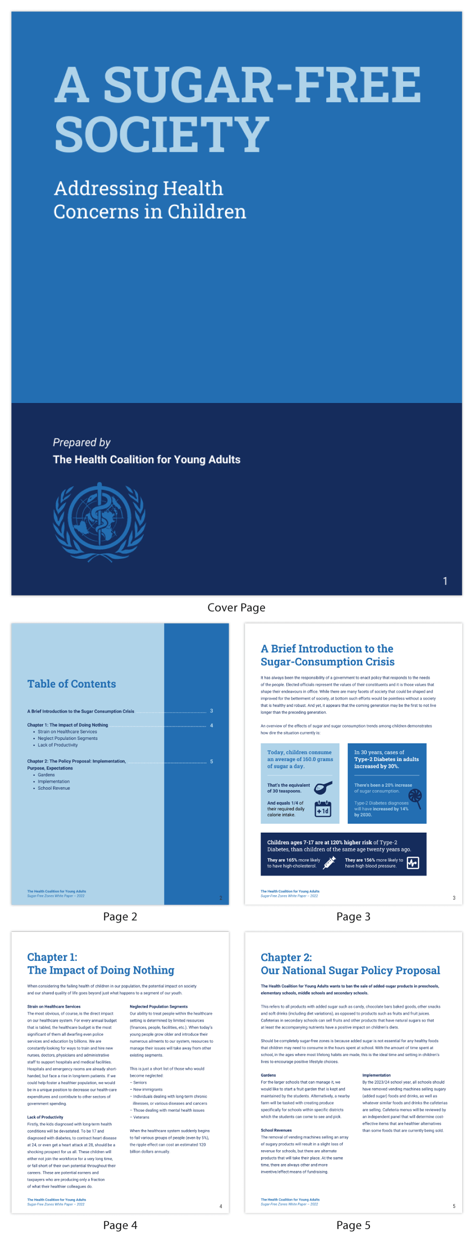 Blue Government Healthcare Policy White Paper Template