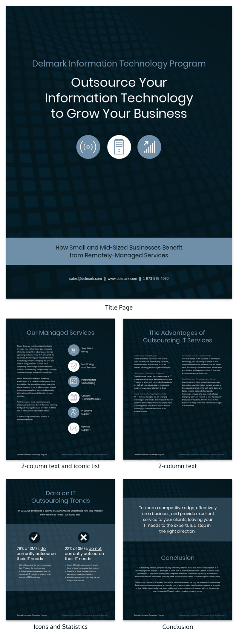Business Information Technology White Paper Template