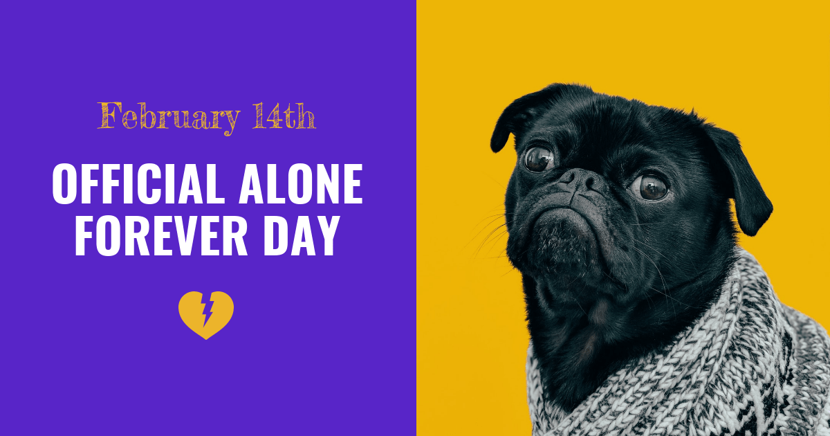Funny Pug Valentine's Day Facebook Banner Template