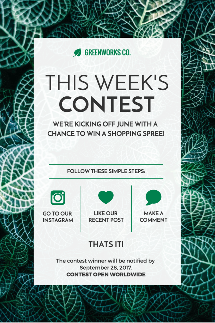 Contest Newsletter Template