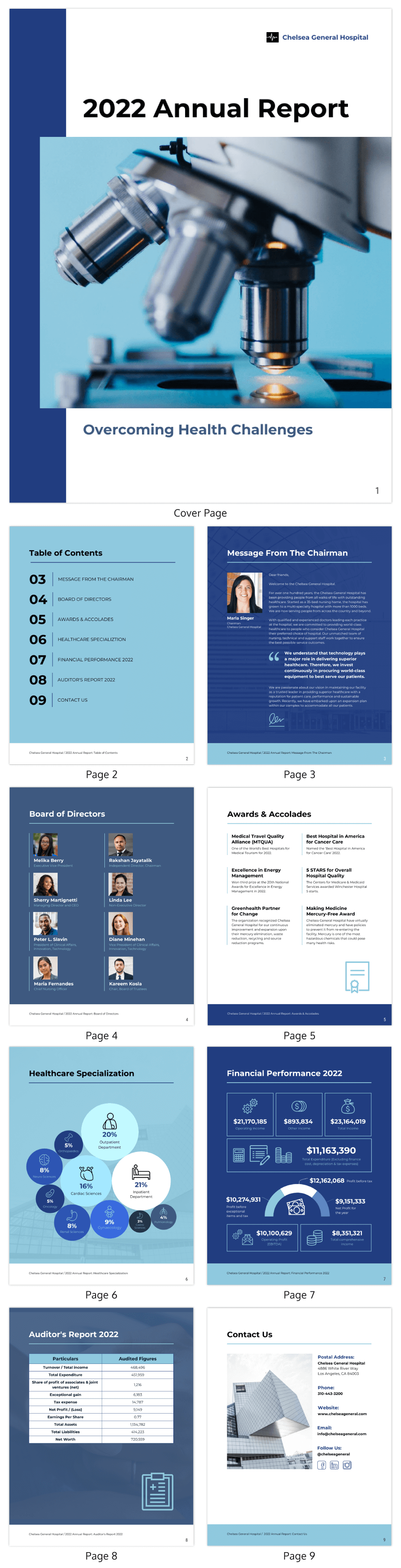 Professional Healthcare Annual Report Template