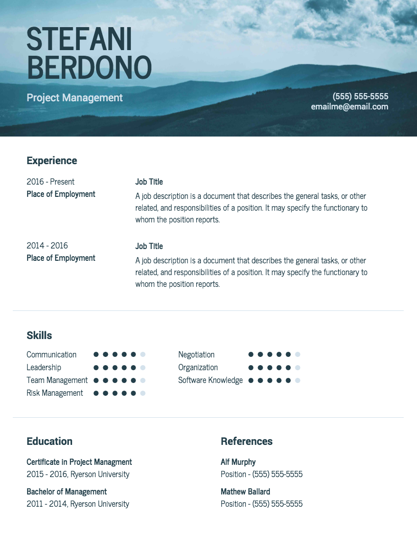 Sleek Modern Resume Template
