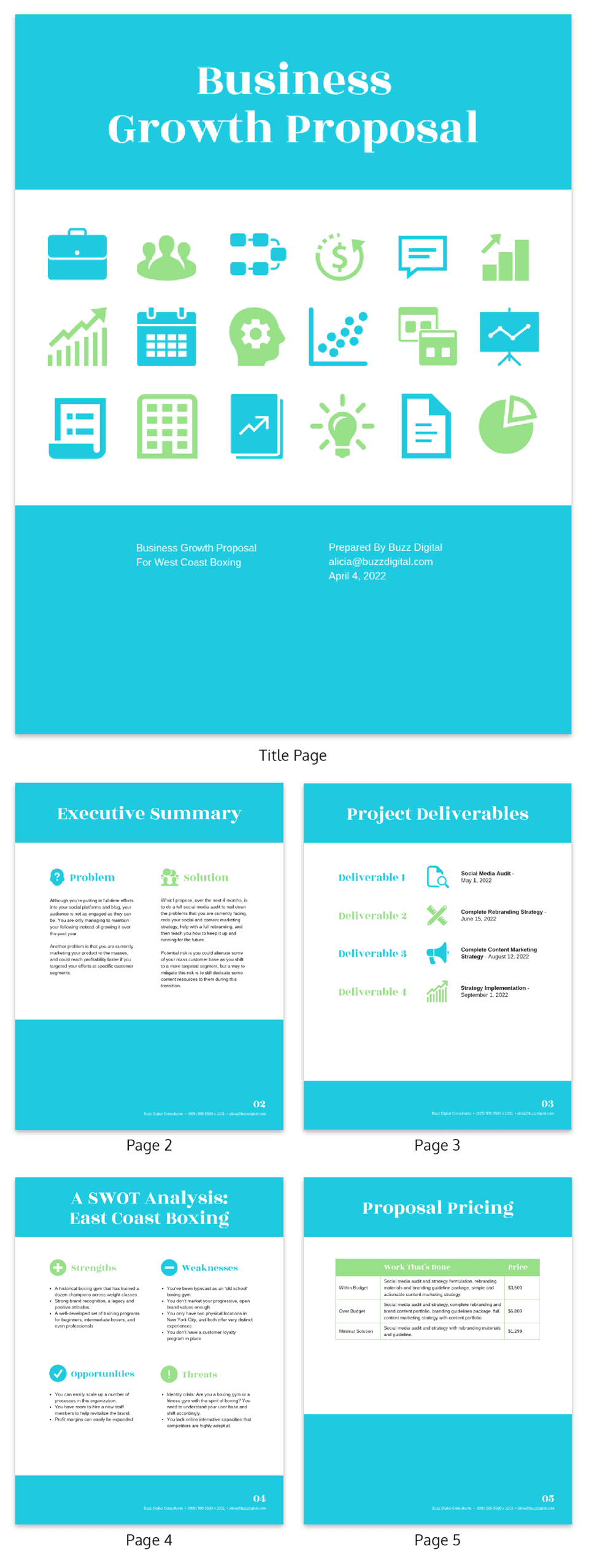 B2C Client Consulting Proposal Template