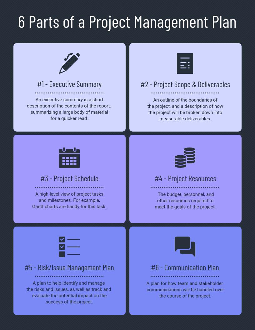 Violet Management Plan Infographic Template