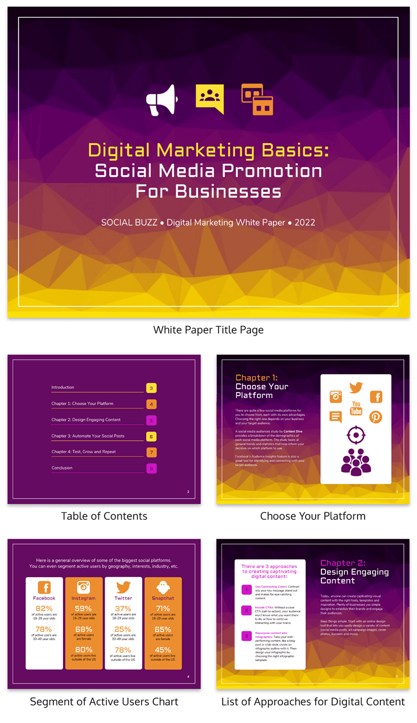 Social Media Promotion White Paper Template