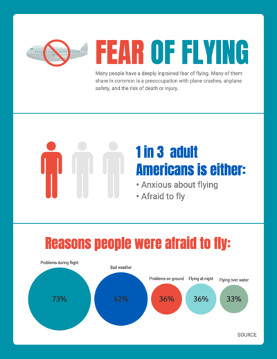 Flying Survey Infographic Template