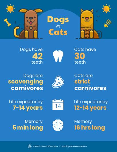 Comparison Infographic Templates - Venngage
