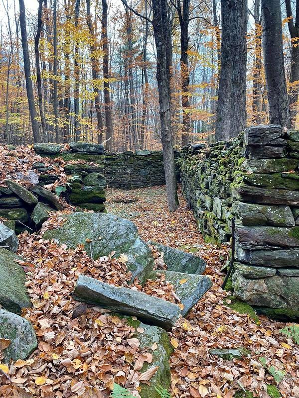 Dexter Lyman Homestead in Huntington Group Hike