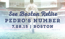 Pedro Martinez number retire tickets
