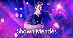 Image Shawn Mendes