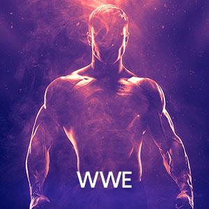Imagem Ingressos WWE