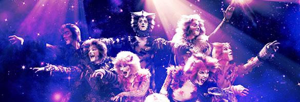 imagen boletos Cats