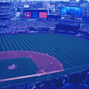 image New York Yankees
