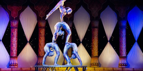 Cirque Du Soleil Discounted Tickets