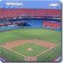 Florida Marlins MLB