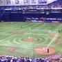 Minnesota Twins MLB