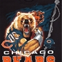 Chicago Bears NFL