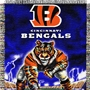Cincinnati Bengals NFL