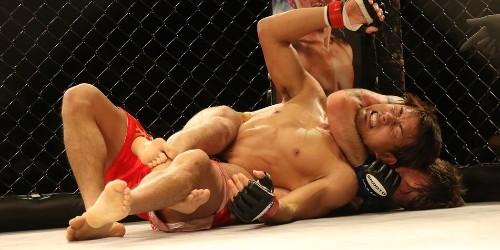 UFC - Ultimate Fighting Championship