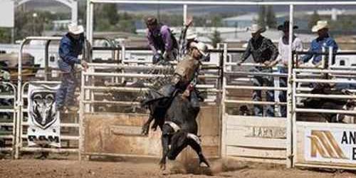 PBR - Professional Bull Riders