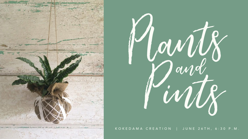 Plants_pints_kokedama_fb