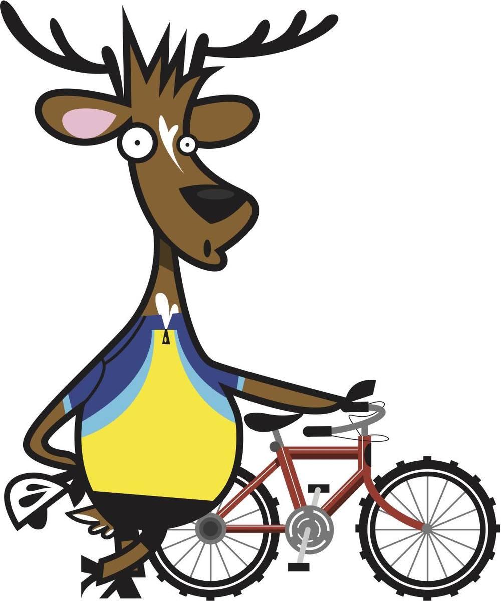 Bike_buck
