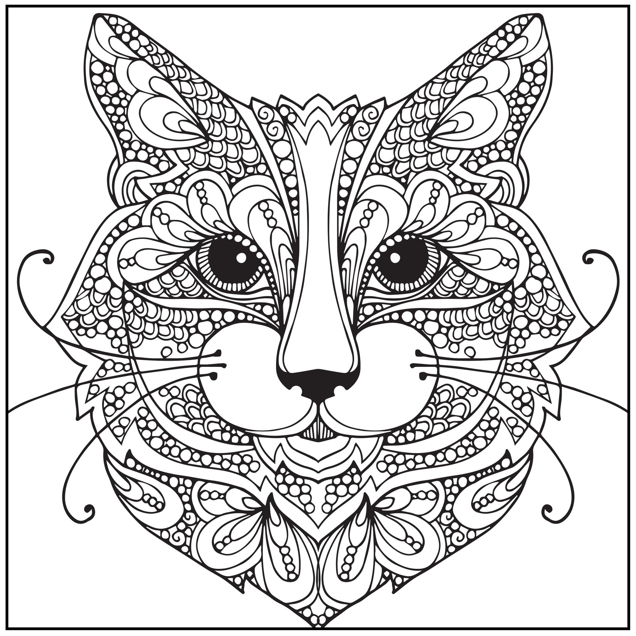 Color_with_music_wild_about_cats_adult_coloring_book_blank_page