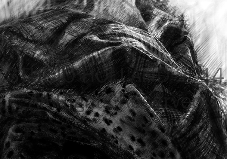 Shirts_study_detail_by_brent_holland_web