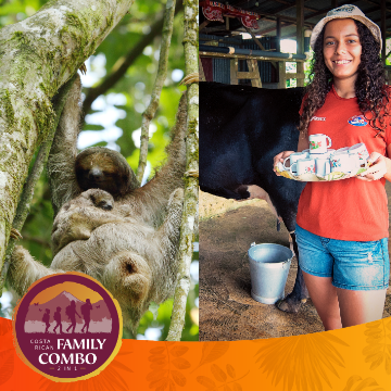 Combo for Families: Sloth Watching, Campesino Tour, Typical Lunch.