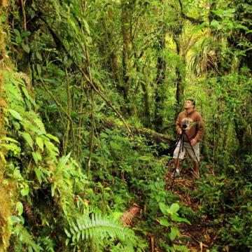 Senderismo en Bosque Nuboso   Parque Nacional Juan Castro Blanco