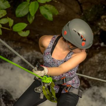 Canyoning Spider Monkey