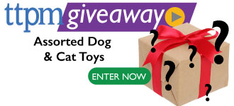 Mystery Dog and Cat Toy Assortment