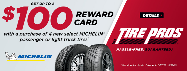 Michelin Summer Rebate