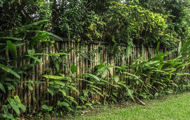 Titathink-Wood fences