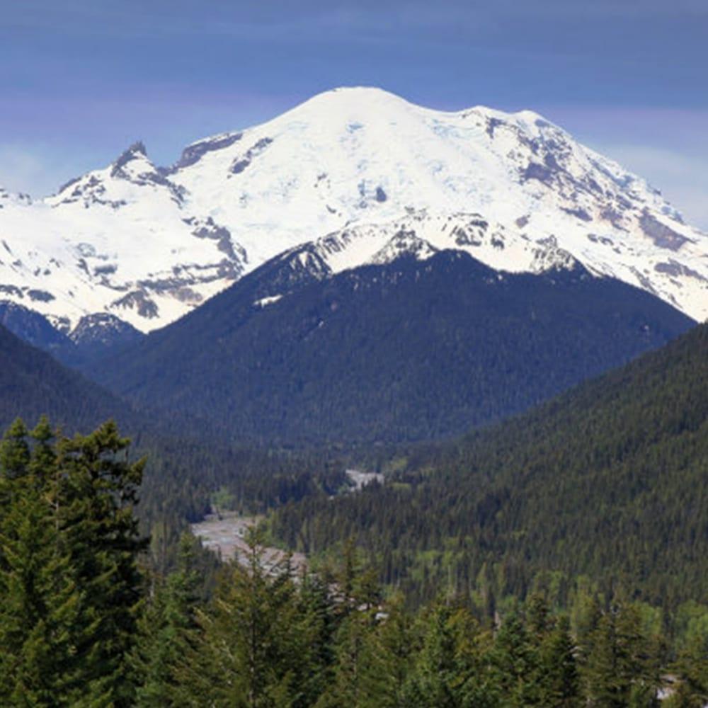 Mt Rainier park