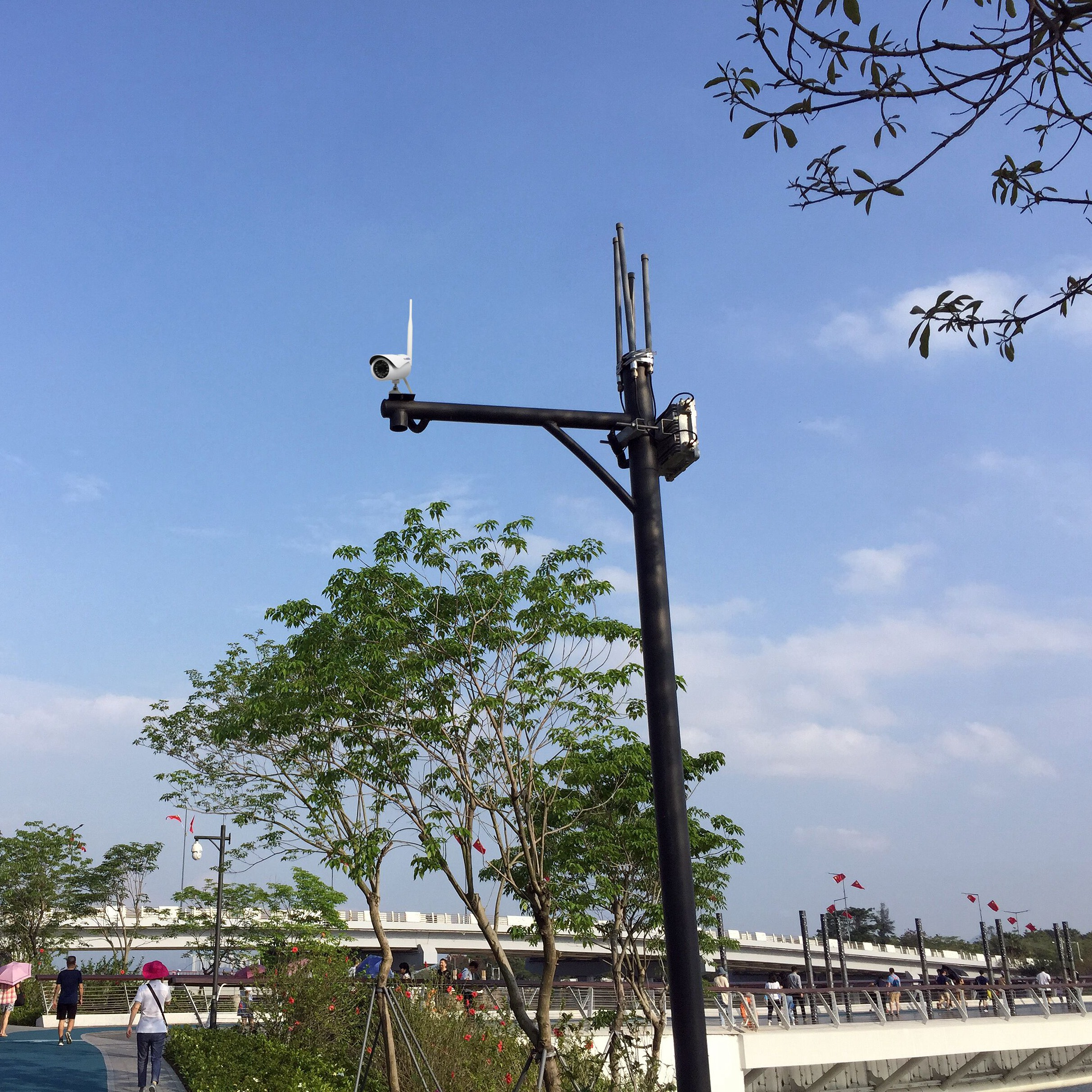 Public-outside-camera