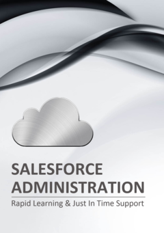 RAPID LEARNING SALESFORCE ADMINISTRATION