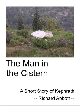 The Man in the Cistern epub cover