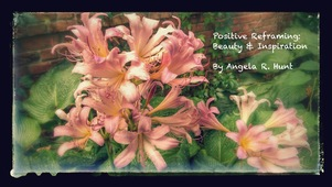Positive Reframing: Beauty & Inspiration