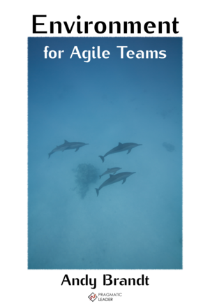 Environment for Agile Teams