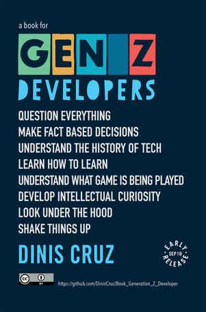 Generation Z Developer