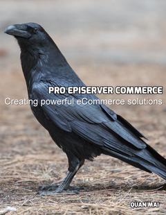 Pro Episerver Commerce